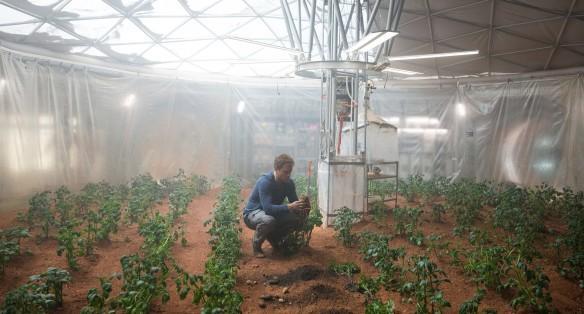 Mark und seine Mars-Kartoffeln. Bild: foxmovies.com